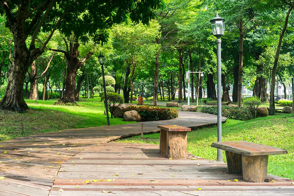 wood chairs in the park